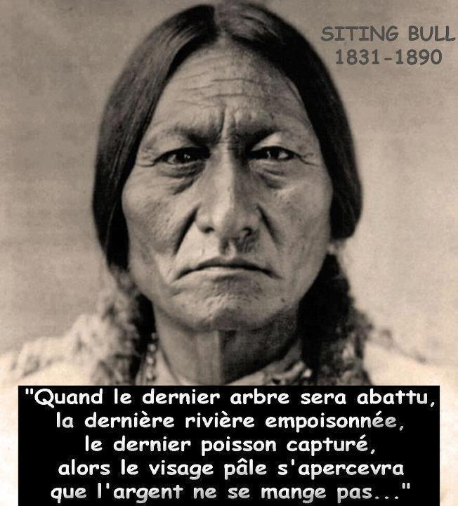 Sitting Bull proverbe
